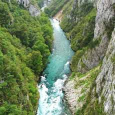rijeka tara
